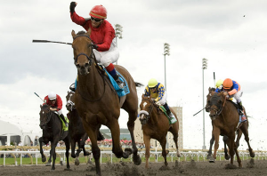 Canadian Horse Racing Faces Tough Future